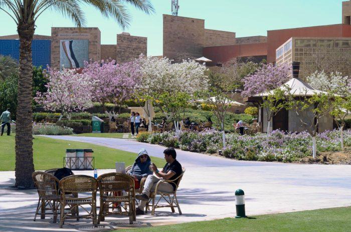 american-university-in-cairo