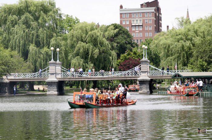 boat-under-bridge