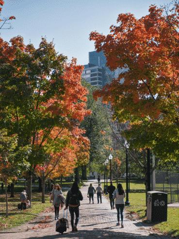 emerson-campus