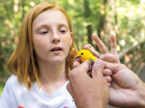The National Audubon Society – Executive Search Client Story