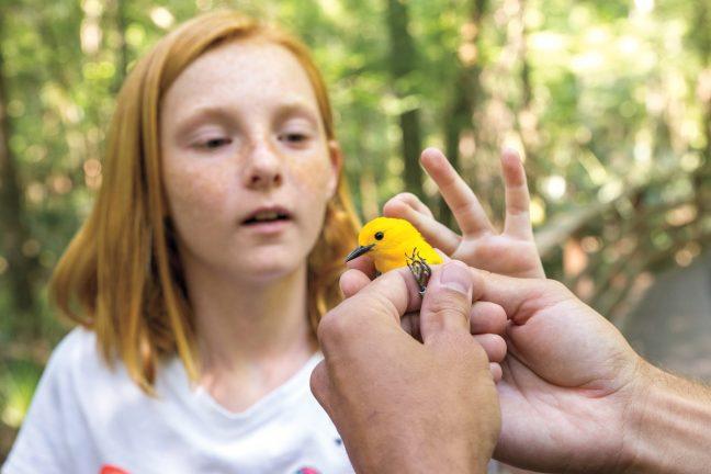 National Audubon Society - girl with bird