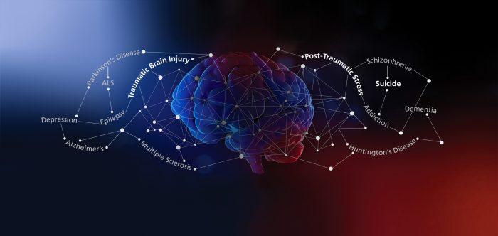 cvb-brain-disease-network